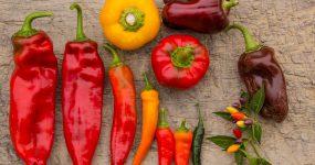Protected: A mezőgazdasági sokféleségről – bevezető kurzus
